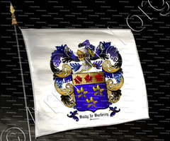drapeau-BAILLY de BARBEREY_Champagne_France (ii)