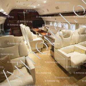 DONAL TRUMP_Lay your head on the custom-embroidered seats. Jet Are Absolutely Unbelievable.__