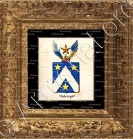 cadre-ancien-or-MALEMPRE_Armorial royal des Pays-Bas_Europe