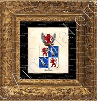 cadre-ancien-or-MARTINI_Armorial royal des Pays-Bas_Europe..