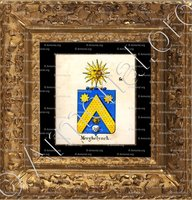 cadre-ancien-or-MERGHELYNCK_Armorial royal des Pays-Bas_Europe