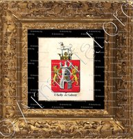 cadre-ancien-or-O'KELLY DE GALWAY_Armorial royal des Pays-Bas_Europe